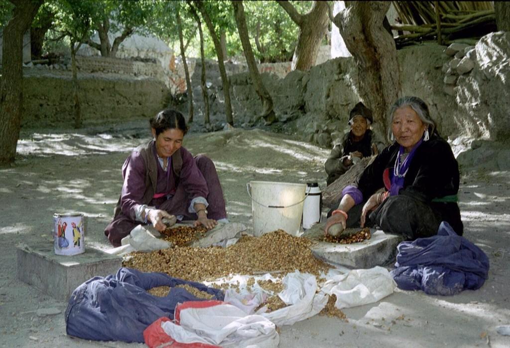 Foto gemaakt tijdens persoonlijker reis naar Ladakh in 2003