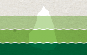 systeemdenken leer je met Green Bridges